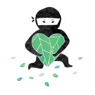 climate ninja